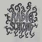Listening Radio Schizoid